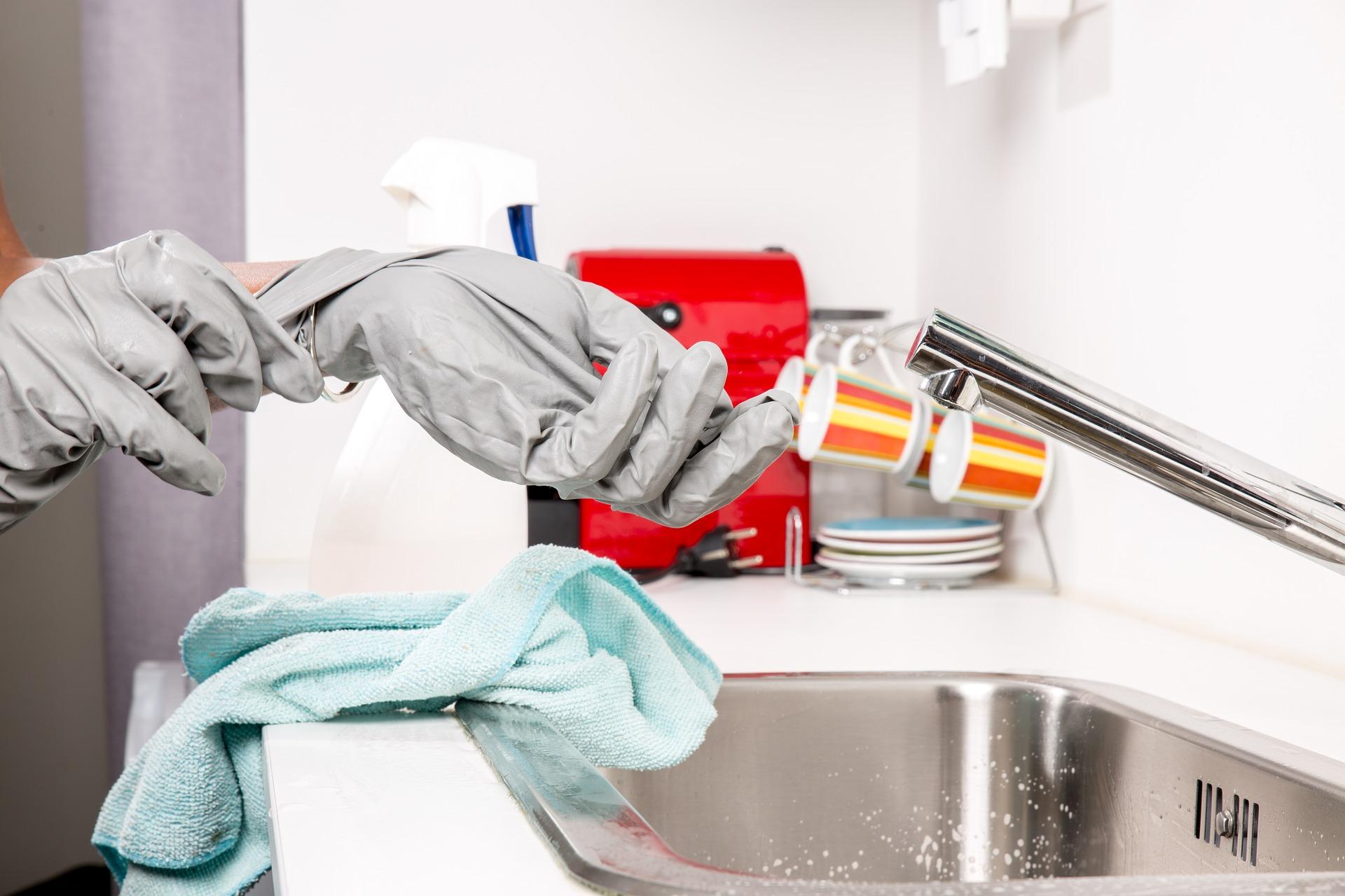Professional maid